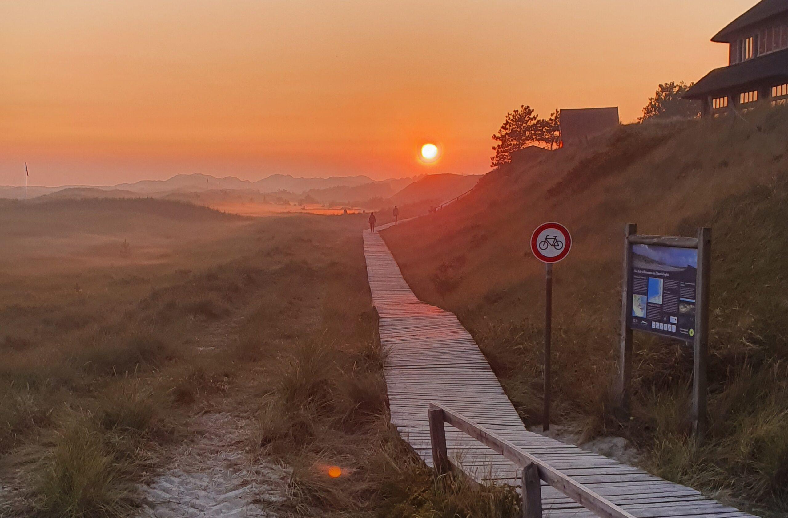 Der Weg zur Sonne