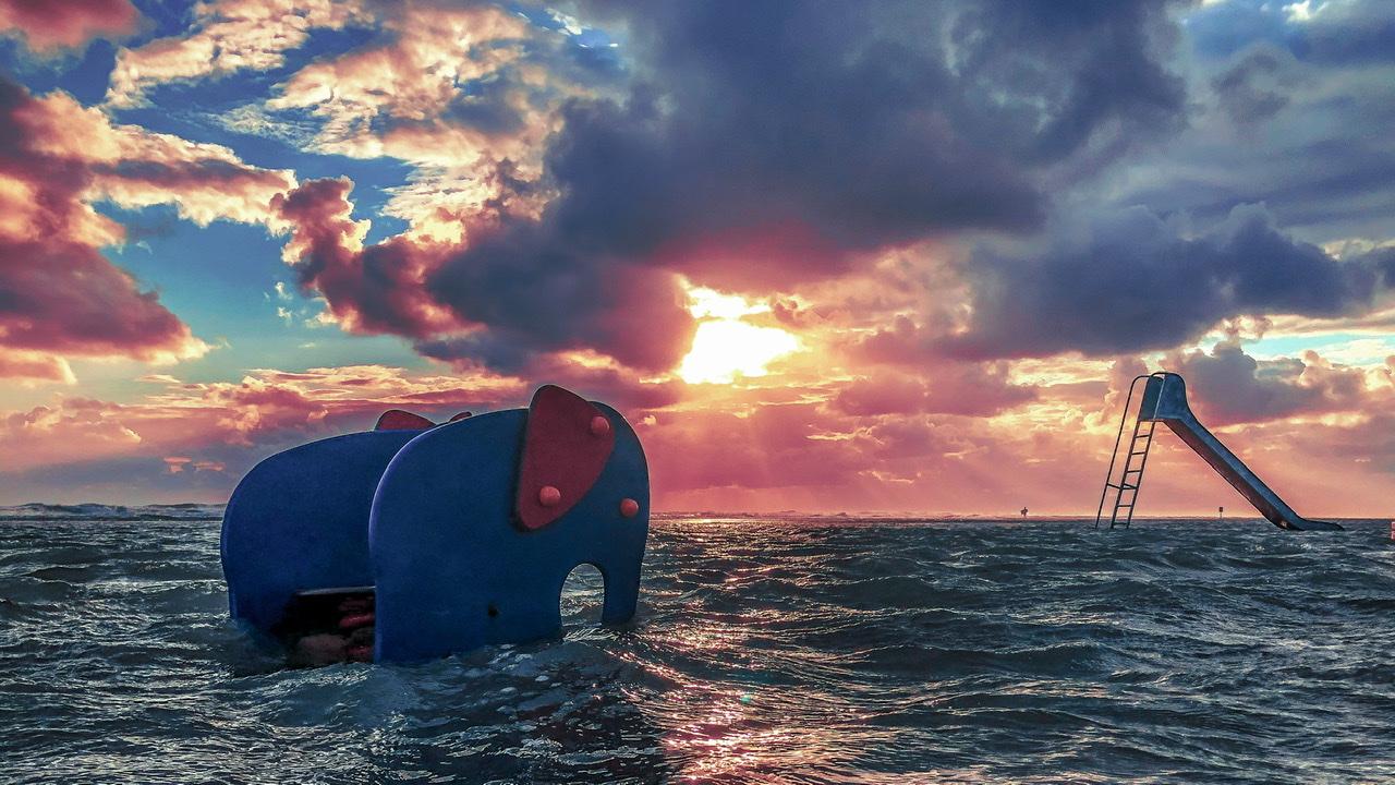 Elefanten in der Nordsee